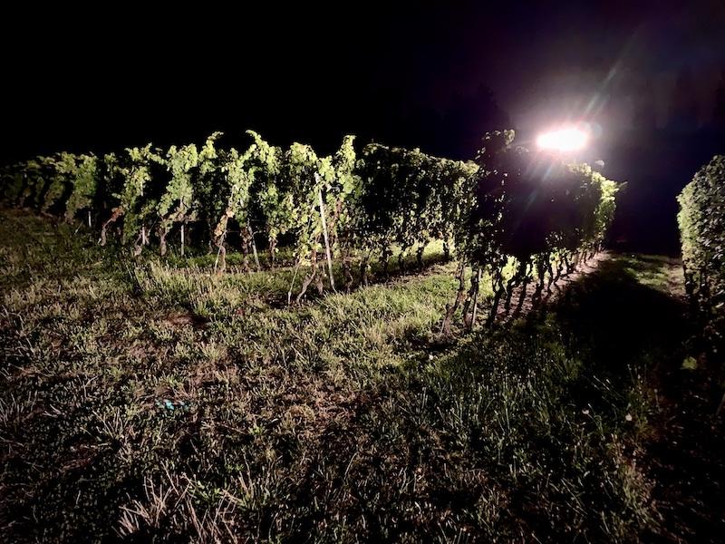 Image machine a harvest night
